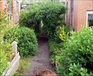 projekty ogrodów